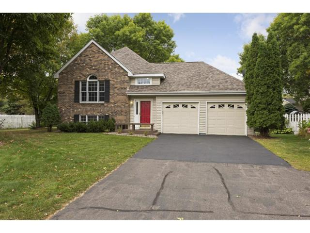 8774 Hawthorne Drive, Eden Prairie, MN 55347 (#4878341) :: The Preferred Home Team