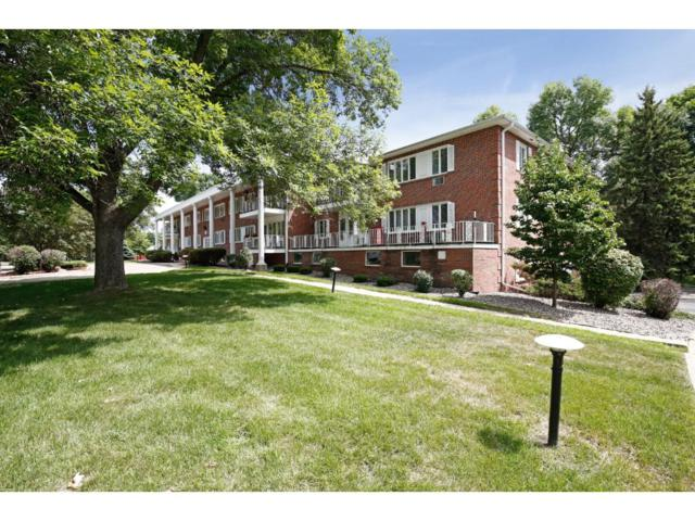 6005 Eden Prairie Road #208, Edina, MN 55436 (#4878695) :: The Preferred Home Team