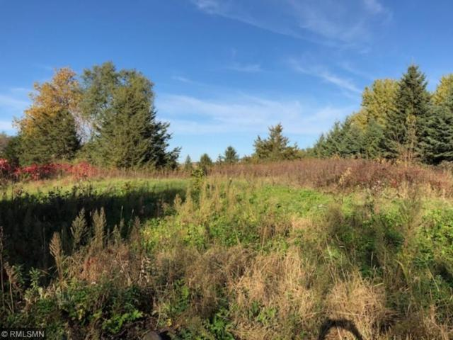 Lot 23 695th Avenue, Prescott, WI 54021 (#4883117) :: The Snyder Team