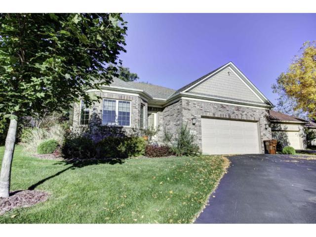 13350 43rd Bay NE, Saint Michael, MN 55376 (#4883250) :: House Hunters Minnesota- Keller Williams Classic Realty NW