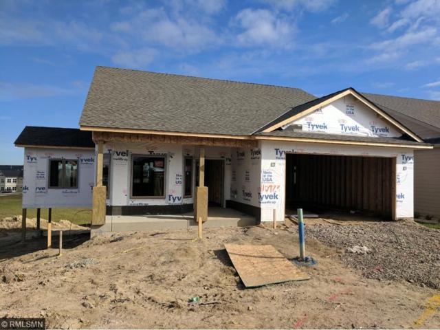 10723 Settlers Lane N, Hanover, MN 55341 (#4884052) :: House Hunters Minnesota- Keller Williams Classic Realty NW