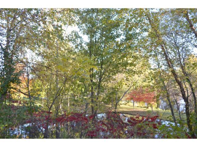 10831 Lexington Drive, Eden Prairie, MN 55344 (#4884876) :: House Hunters Minnesota- Keller Williams Classic Realty NW