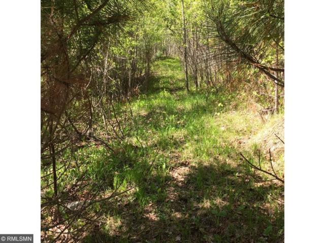 XXXX Arkola Road Road, Kelsey Twp, MN 55724 (#4884986) :: House Hunters Minnesota- Keller Williams Classic Realty NW