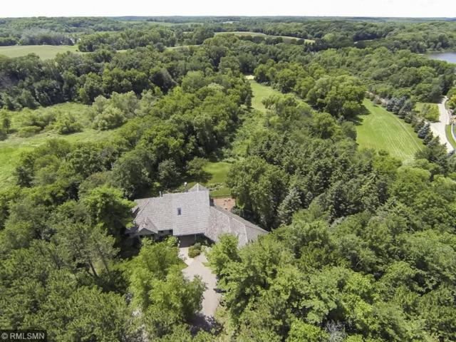 2225 Willow Drive, Medina, MN 55356 (#4885723) :: The Snyder Team