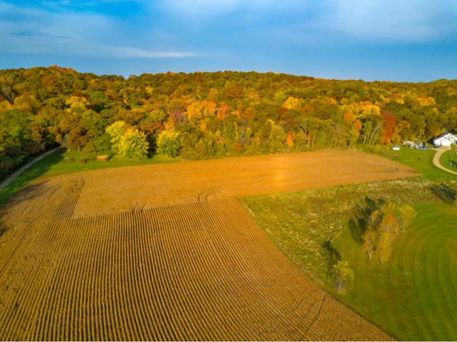 Lot 3 Old Cemetery Rd, Kinnickinnic Twp, WI 54022 (#4886123) :: The Snyder Team