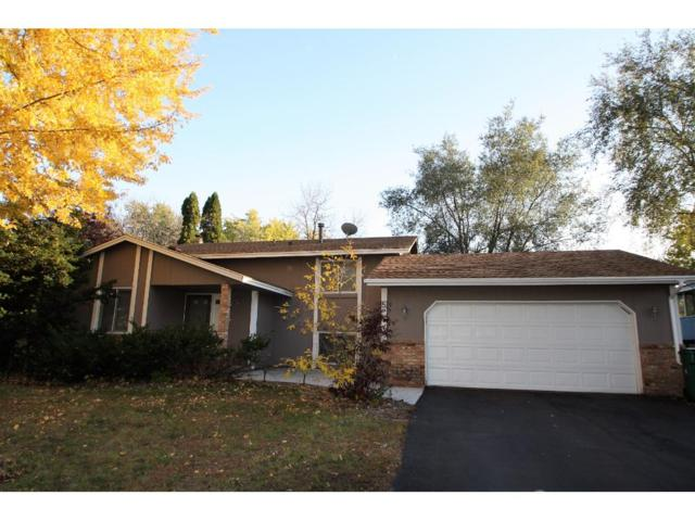 8117 82nd Avenue N, Brooklyn Park, MN 55445 (#4886262) :: The Search Houses Now Team