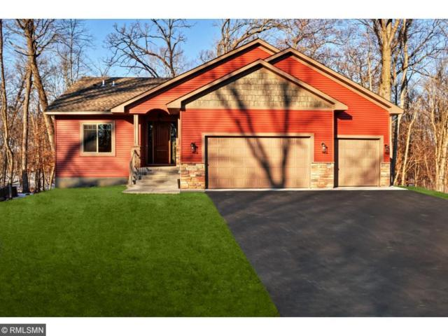29792 Hidden Forest Boulevard, Chisago City, MN 55013 (#4886331) :: The Preferred Home Team