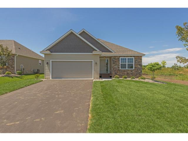 9117 Compass Pointe Road, Woodbury, MN 55129 (#4886404) :: The Search Houses Now Team