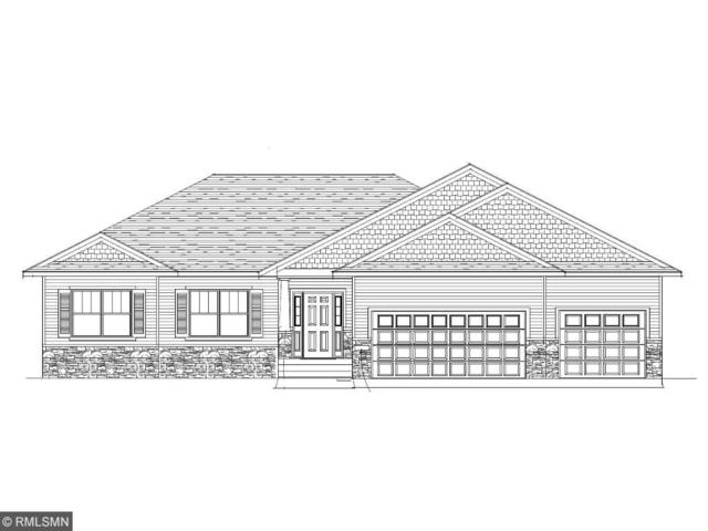 10146 245th Street, Chisago City, MN 55013 (#4886441) :: The Preferred Home Team