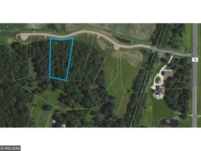 21781 Trestle Ridge Road, Albany, MN 56307 (#4886929) :: The Search Houses Now Team