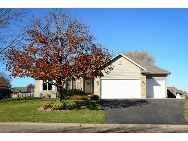 13391 Hynes Road, Rogers, MN 55374 (#4887477) :: House Hunters Minnesota- Keller Williams Classic Realty NW