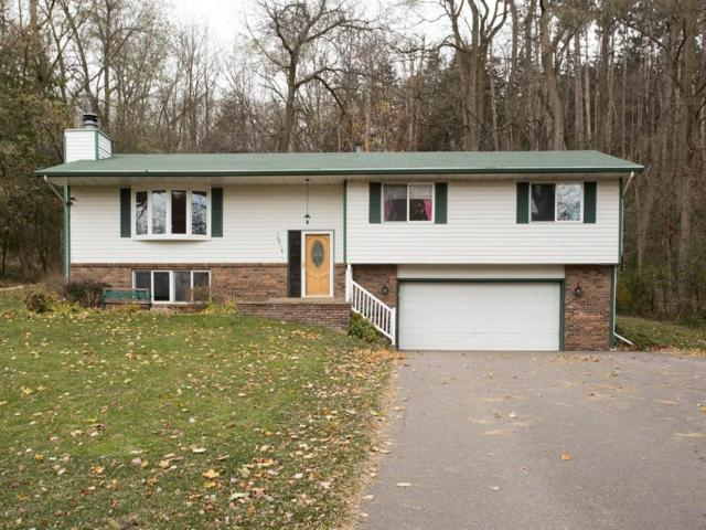 16018 6th Street N, Lakeland, MN 55043 (#4891849) :: The Preferred Home Team