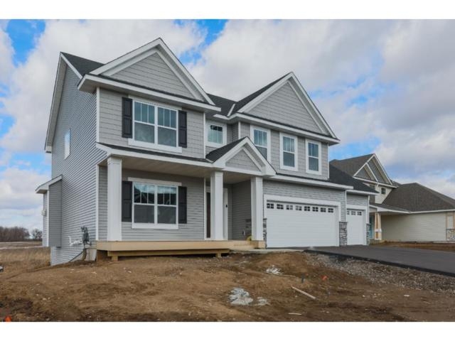 13985 Ashford Path, Rosemount, MN 55068 (#4892332) :: The Preferred Home Team