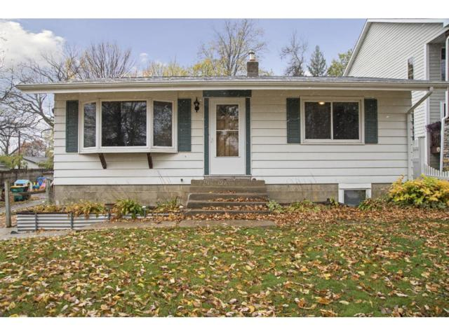 2245 Bayview Place, Orono, MN 55391 (#4892383) :: Norse Realty