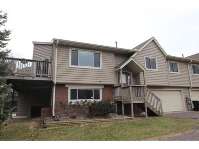 10667 Killdeer Street NW, Coon Rapids, MN 55433 (#4892472) :: Team Firnstahl