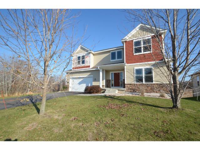 12253 Opal Street NE, Blaine, MN 55449 (#4892506) :: The Preferred Home Team