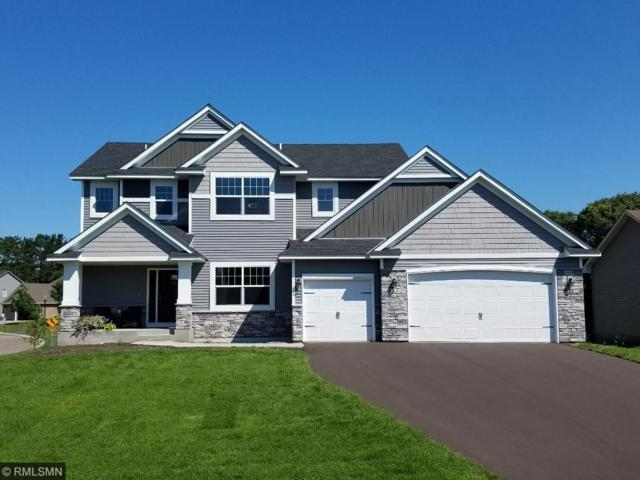 19039 238th Ave Nw, Big Lake, MN 55309 (#4892794) :: Team Firnstahl