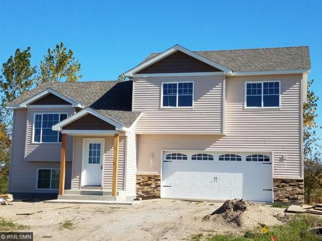 411 65th Street SW, Waverly, MN 55390 (#4892817) :: The Preferred Home Team