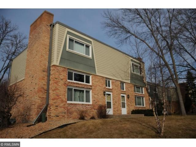 7451 W Franklin Avenue #203, Saint Louis Park, MN 55426 (#4892828) :: The Preferred Home Team