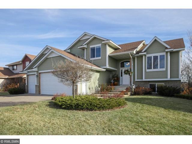 7686 Padgett Avenue NE, Otsego, MN 55330 (#4894505) :: House Hunters Minnesota- Keller Williams Classic Realty NW