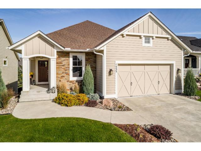 1233 Waters Path, Woodbury, MN 55129 (#4894878) :: The Snyder Team