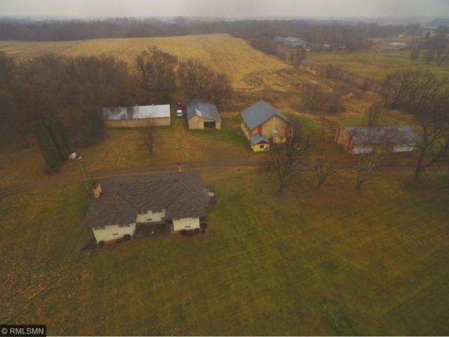 6635 Old Viking Boulevard NW, Nowthen, MN 55303 (#4895221) :: The Snyder Team