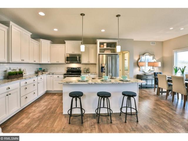 107 Tribute Avenue, Hudson, WI 54016 (#4895723) :: House Hunters Minnesota- Keller Williams Classic Realty NW