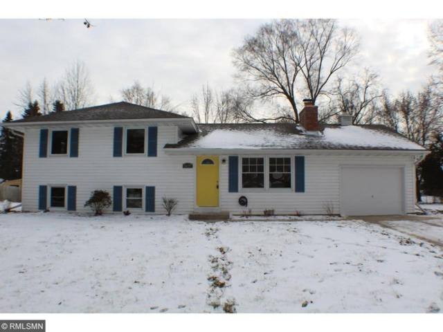 8435 Ingberg Trail S, Cottage Grove, MN 55016 (#4895753) :: The Snyder Team