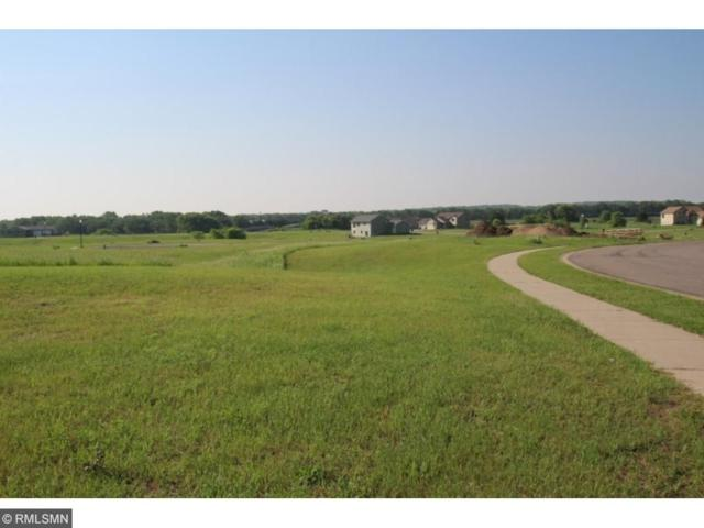 1XX7 Lauren Court, Clearwater, MN 55320 (#4896494) :: The Preferred Home Team
