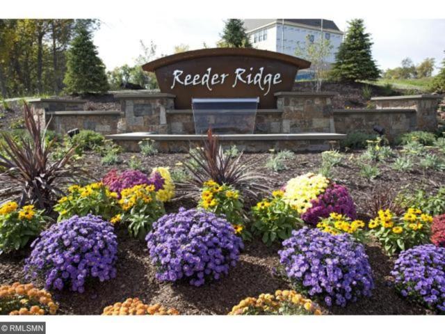 16691 Reeder Ridge Ridge, Eden Prairie, MN 55347 (#4896766) :: Team Winegarden