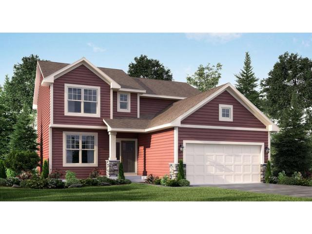 7473 160th Avenue NW, Ramsey, MN 55303 (#4896803) :: The Preferred Home Team