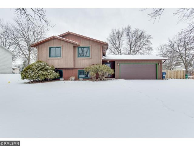 10692 95th Place N, Maple Grove, MN 55369 (#4896896) :: The Preferred Home Team