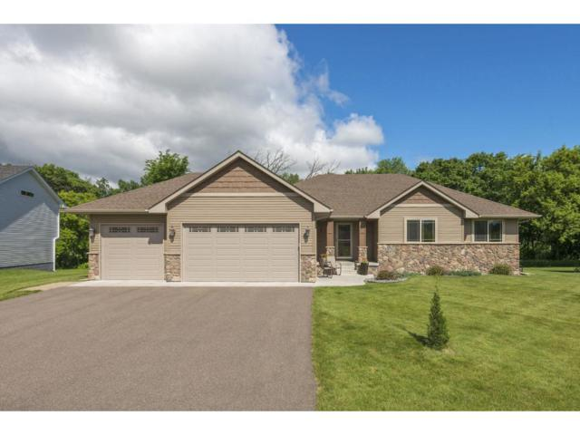 31735 Marshview Court, Lindstrom, MN 55045 (#4897001) :: The Preferred Home Team