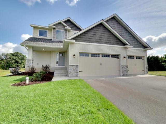3719 172nd Lane NE, Ham Lake, MN 55304 (#4898121) :: The Preferred Home Team