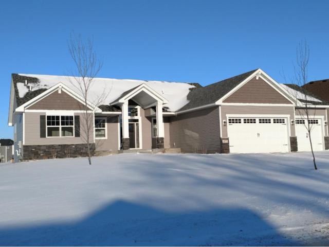 16570 Wintergreen Street NW, Andover, MN 55304 (#4899174) :: The Preferred Home Team