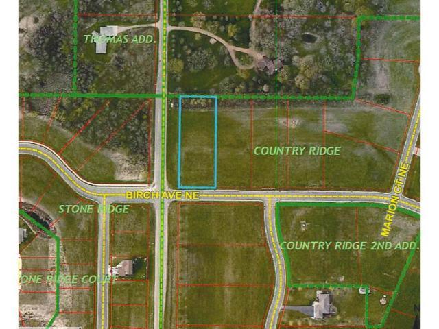 1001 Birch Avenue NE, Montgomery, MN 56069 (#4899505) :: The Preferred Home Team