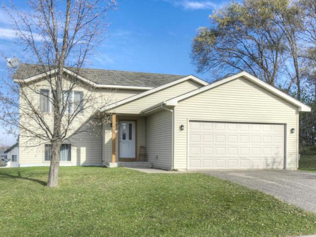 915 Steamboat Lane, Montrose, MN 55363 (#4899860) :: Twin Cities Listed