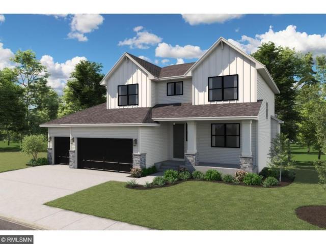 9849 NE Jasmine Court NE, Hanover, MN 55341 (#4900092) :: House Hunters Minnesota- Keller Williams Classic Realty NW