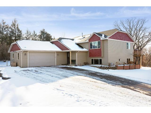 6244 155th Avenue NW, Ramsey, MN 55303 (#4900250) :: The Preferred Home Team