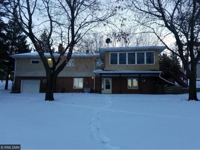 28204 Elk Lake Road E, Zimmerman, MN 55398 (#4901506) :: Team Winegarden