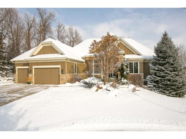 14907 Wildwood Court, Prior Lake, MN 55372 (#4901553) :: The Preferred Home Team