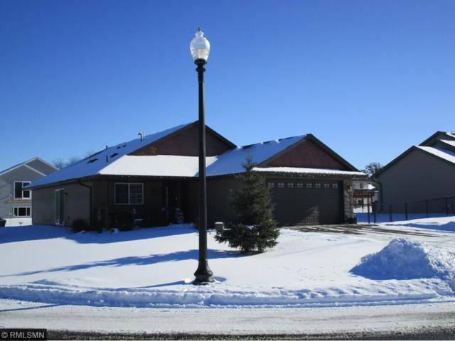 30387 Fox Run Road, Stacy, MN 55079 (#4901805) :: The Preferred Home Team