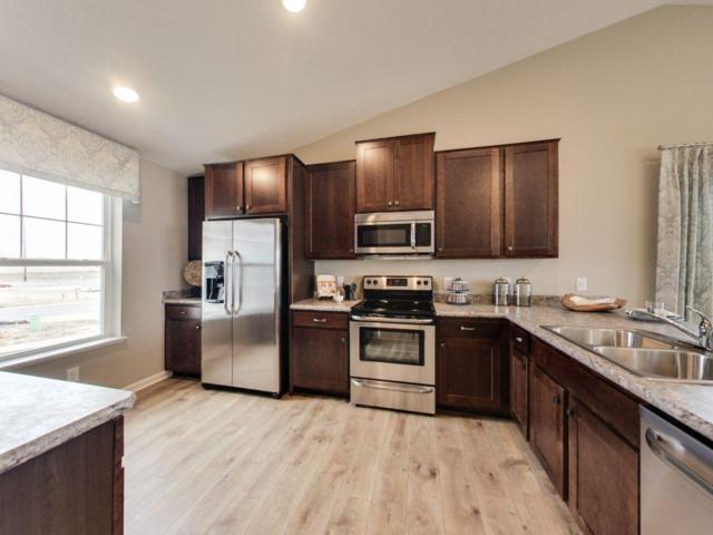 1526 Willow Circle, Shakopee, MN 55379 (#4902059) :: The Preferred Home Team