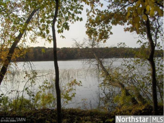 28477 Mayo Hills Road, Pequot Lakes, MN 56472 (#4902229) :: The Preferred Home Team