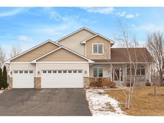 11384 12th Street NE, Hanover, MN 55341 (#4904226) :: House Hunters Minnesota- Keller Williams Classic Realty NW
