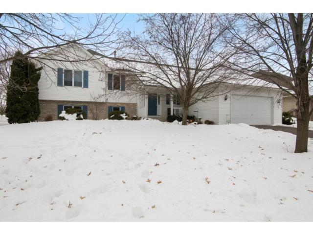 4326 207th Street W, Farmington, MN 55024 (#4904232) :: The Preferred Home Team