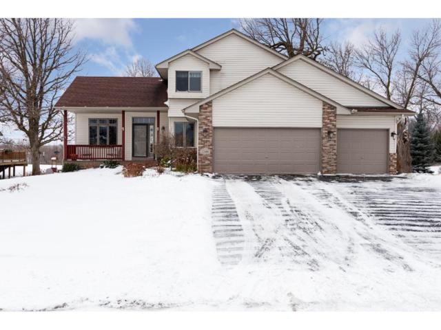1248 Irvine Drive, Hanover, MN 55341 (#4904774) :: House Hunters Minnesota- Keller Williams Classic Realty NW
