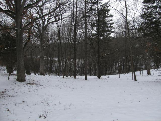 260 Bushaway Road, Wayzata, MN 55391 (#4905206) :: House Hunters Minnesota- Keller Williams Classic Realty NW