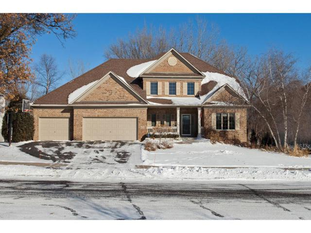 8669 Carriage Hill Road, Savage, MN 55378 (#4906593) :: The Preferred Home Team