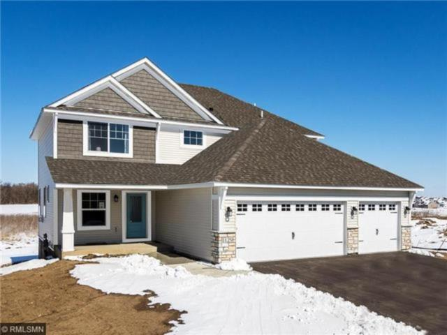 14110 Ailesbury Avenue, Rosemount, MN 55068 (#4907084) :: The Preferred Home Team